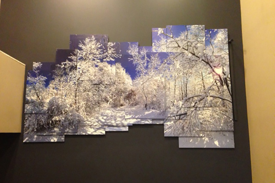 Artist Canvases Mounted Prints Wrap City Graphics